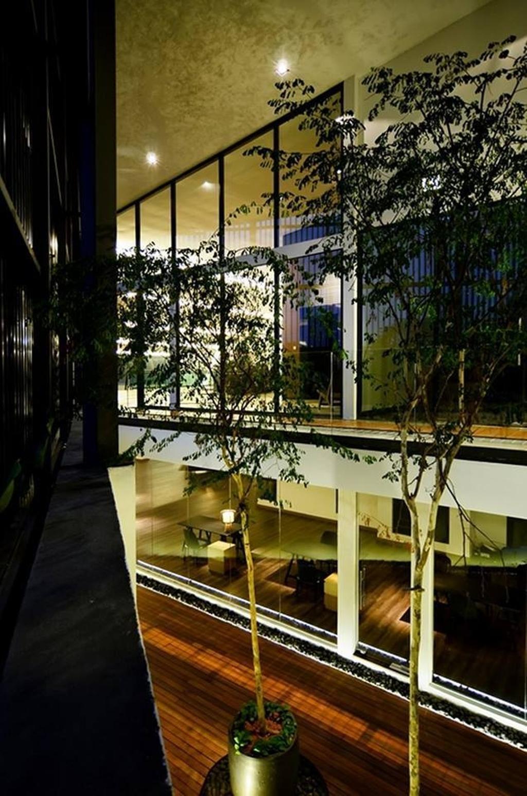 Contemporary, Landed, Garden, Show Unit Mont Kiara, Interior Designer, One Space Sdn Bhd, Flora, Para Rubber Tree, Plant, Tree, Canopy, Umbrella, Jar, Potted Plant, Pottery, Vase