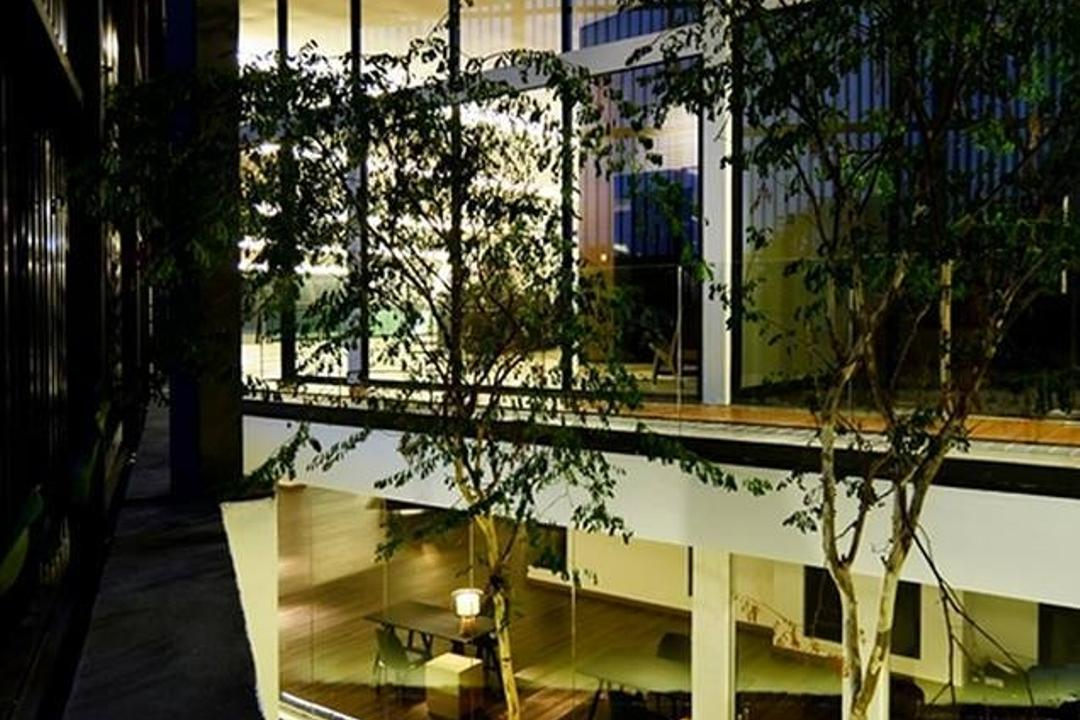 Show Unit Mont Kiara, One Space Sdn Bhd, Contemporary, Garden, Landed, Flora, Para Rubber Tree, Plant, Tree, Canopy, Umbrella, Jar, Potted Plant, Pottery, Vase
