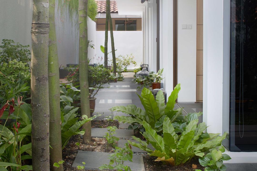 Jalan Jambu, asolidplan, Modern, Garden, Landed, Flora, Jar, Plant, Potted Plant, Pottery, Vase, Gardening, Outdoors, Porch
