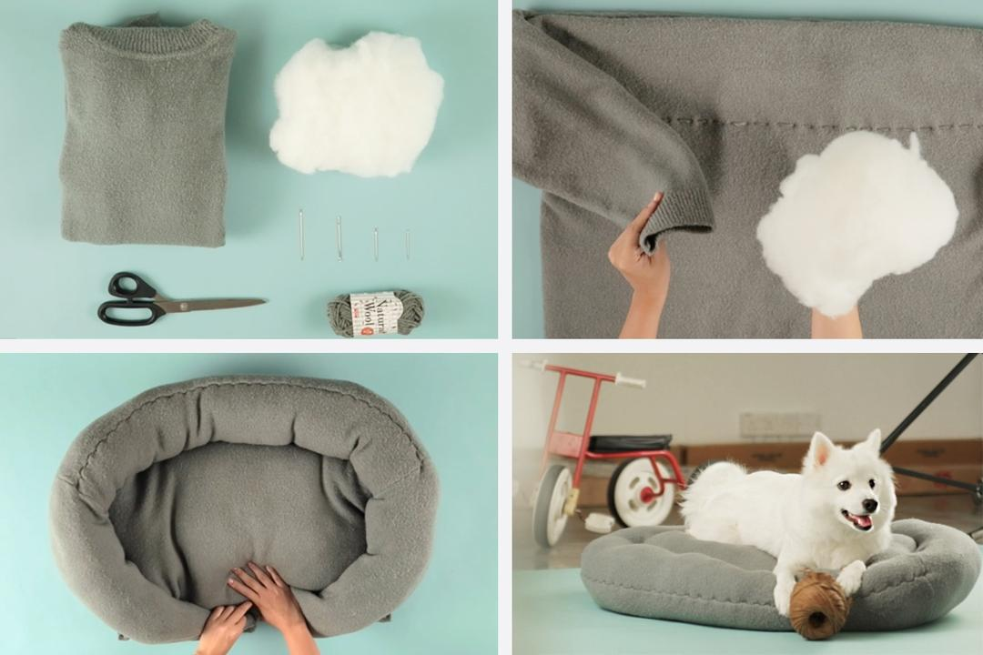 Qanvast Hacks: Turn Your Sweater Into A Pet Bed