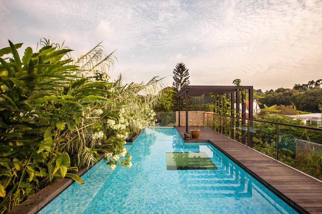 Merryn, Aamer Architects, Contemporary, Landed, Top Floor, Swimming Pool, Private Pool, House Pool, Plantation, Wooden Flooring, Fern, Flora, Plant, Pool, Water, Building, Hotel, Resort