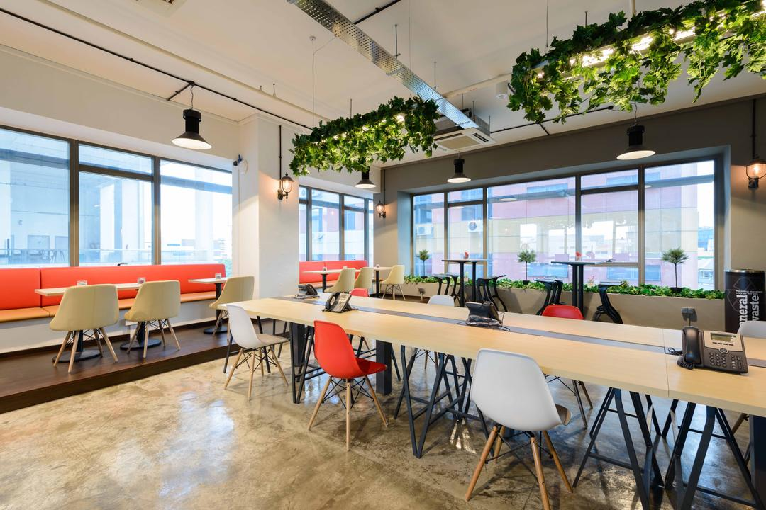 Harission Road, Starry Homestead, Scandinavian, Commercial, Hanging Plant, Ceiling Hanging Plants, Plants, Bright, Pendant Lights, Open Workspace, Open Concept Workspace, White Chairs, Pink Chairs, Colorful Chairs, Working Table, Chair, Furniture, Flora, Jar, Plant, Potted Plant, Pottery, Vase