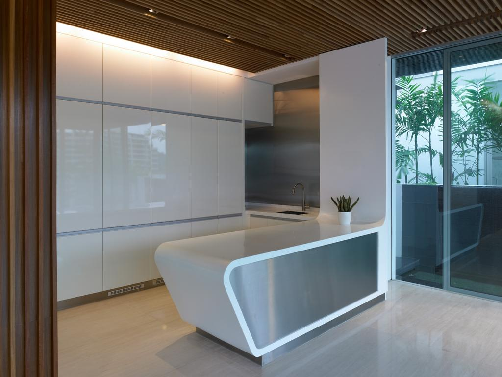 Modern, Landed, Kitchen, Cove Way 2, Architect, Greg Shand Architects, White Cabinets, Cabinets, White Kitchen Counter, Kitchen Counter, Concealed Lights, Wooden Ceiling, Wooden Wall, Flora, Jar, Plant, Potted Plant, Pottery, Vase, Indoors, Interior Design