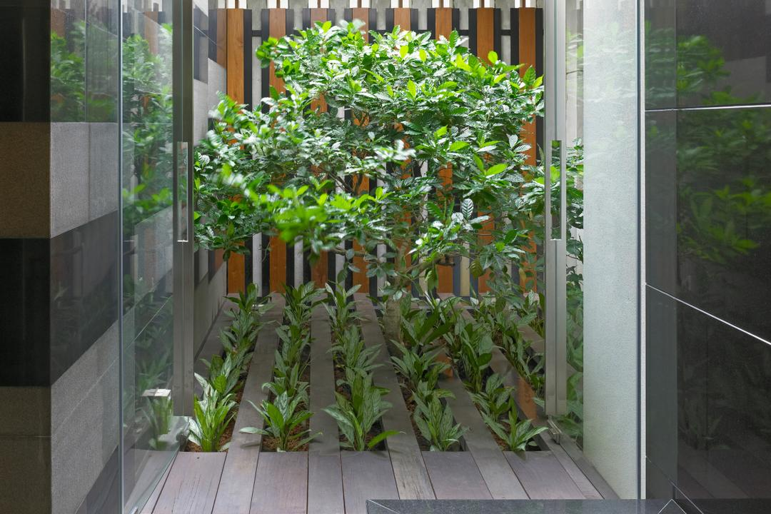 Ocean Drive 3, Greg Shand Architects, Modern, Landed, Recessed Lights, Indoor Plantation, Small Garden, Indoor Garden, Glass Doors, Flora, Jar, Plant, Potted Plant, Pottery, Vase, Herbs, Planter