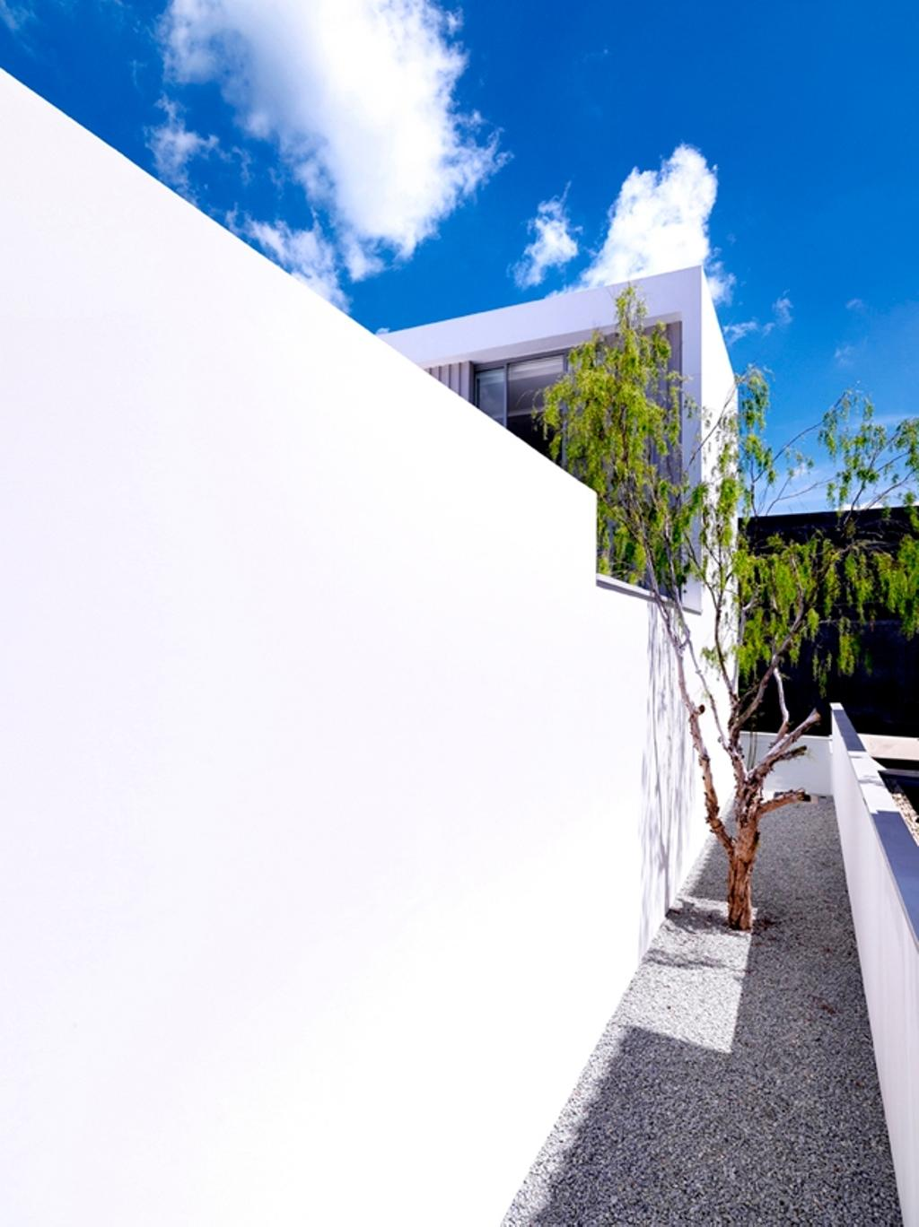 Modern, Landed, Ontario, Architect, Ministry of Design, Pebbles Path, Planted Trees, White Wall, Flora, Plant, Vine