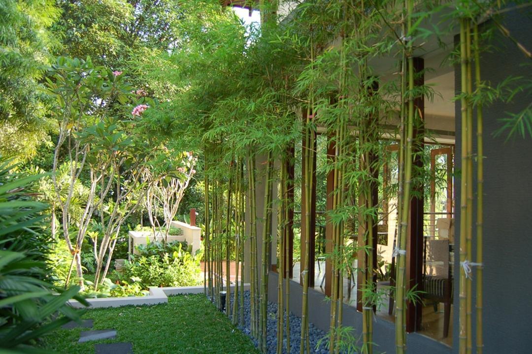 Mount Echo Park, Timur Designs, Contemporary, Landed, Bamboo, Flora, Plant, Porch, Jar, Potted Plant, Pottery, Vase
