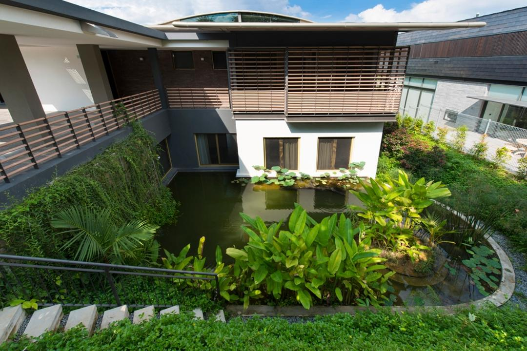 Olive Road, Timur Designs, Contemporary, Garden, Landed, Outdoors, Pond, Water, Building, House, Housing, Villa, Backyard, Yard
