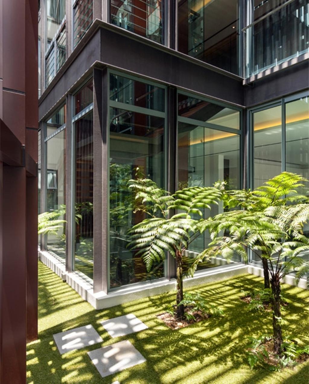 Modern, Landed, Trevose, Architect, Timur Designs, Porch, Arecaceae, Flora, Palm Tree, Plant, Tree, Fern