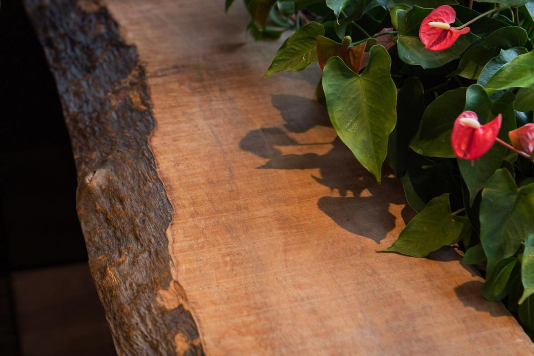 新界區住宅, 皓室內設計, 過渡時期, 傳統, 花園, 私家樓, Flora, Jar, Plant, Potted Plant, Pottery, Vase, Anthurium, Blossom, Flower, Food, Pepper, Produce, Vegetable