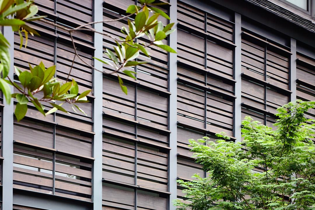 Faber Terrace, HYLA Architects, Contemporary, Landed, Flora, Plant, Fern