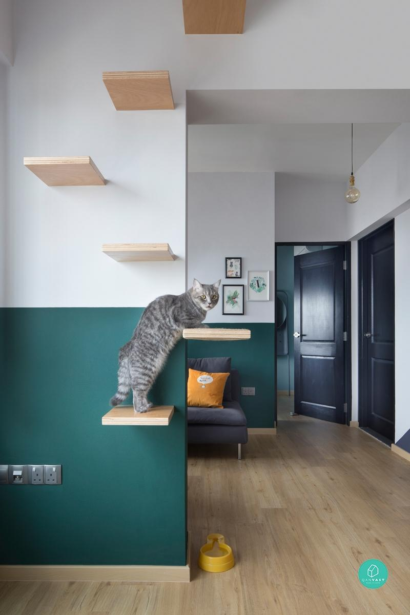 Cat-friendly homes