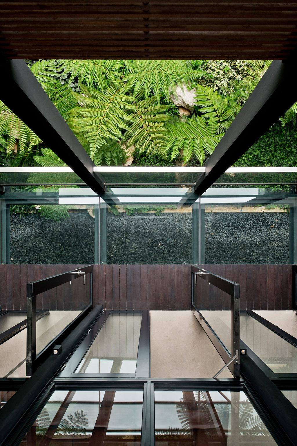 Contemporary, Landed, Toh Heights, Architect, Kite Studio Architecture, Plants, Leaves, Wood, Ventilations, Fern, Flora, Plant