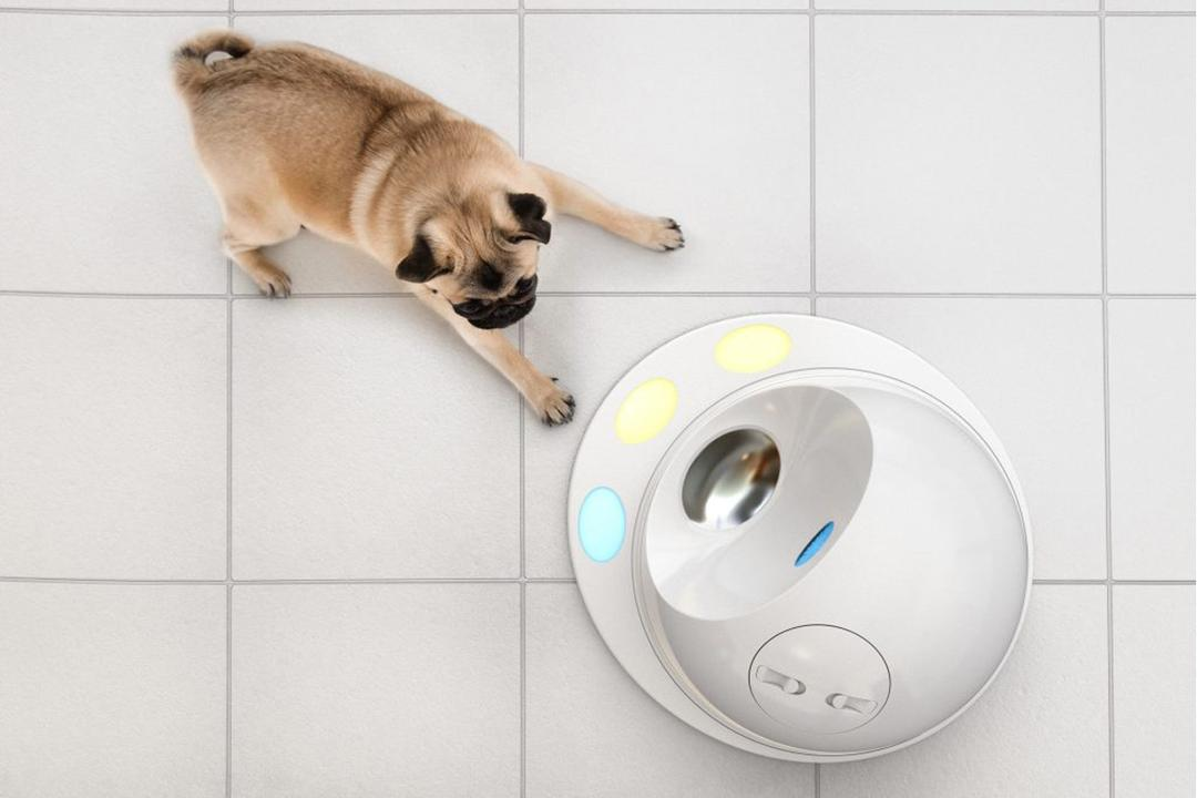 Pet Products Smart Home