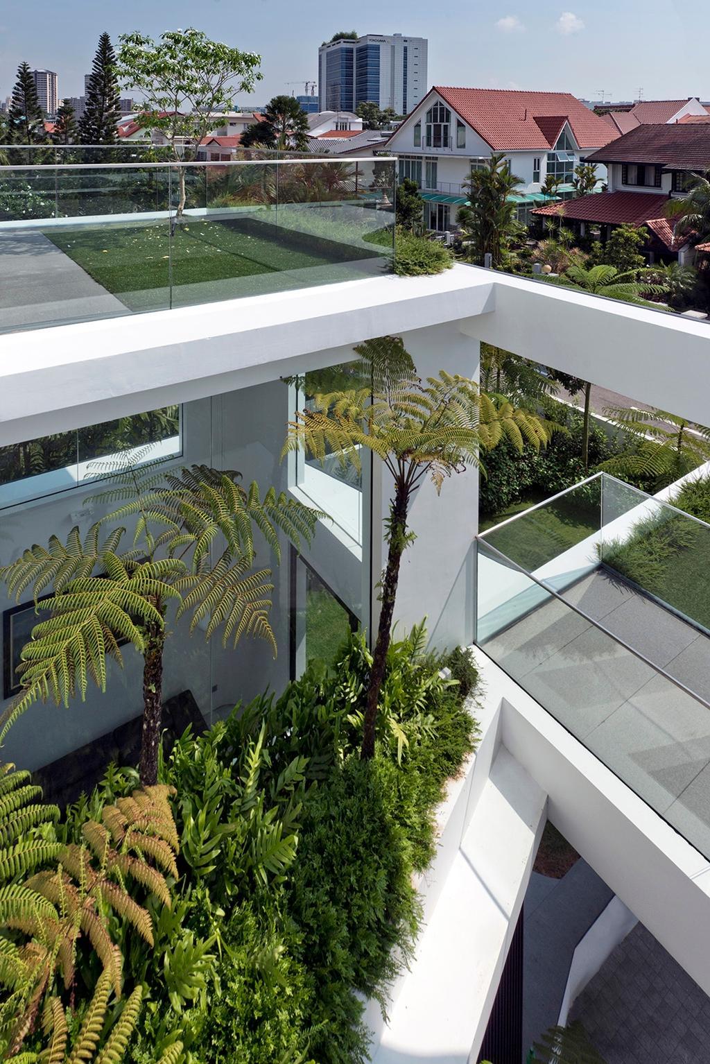 Modern, Landed, Balcony, Tosca Street, Architect, Kite Studio Architecture, Plants, Flora, Jar, Plant, Potted Plant, Pottery, Vase, Fern