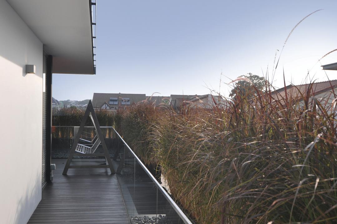 Palm Drive, Kite Studio Architecture, Modern, Balcony, Landed, Wood Floor, Boardwalk, Bridge, Building