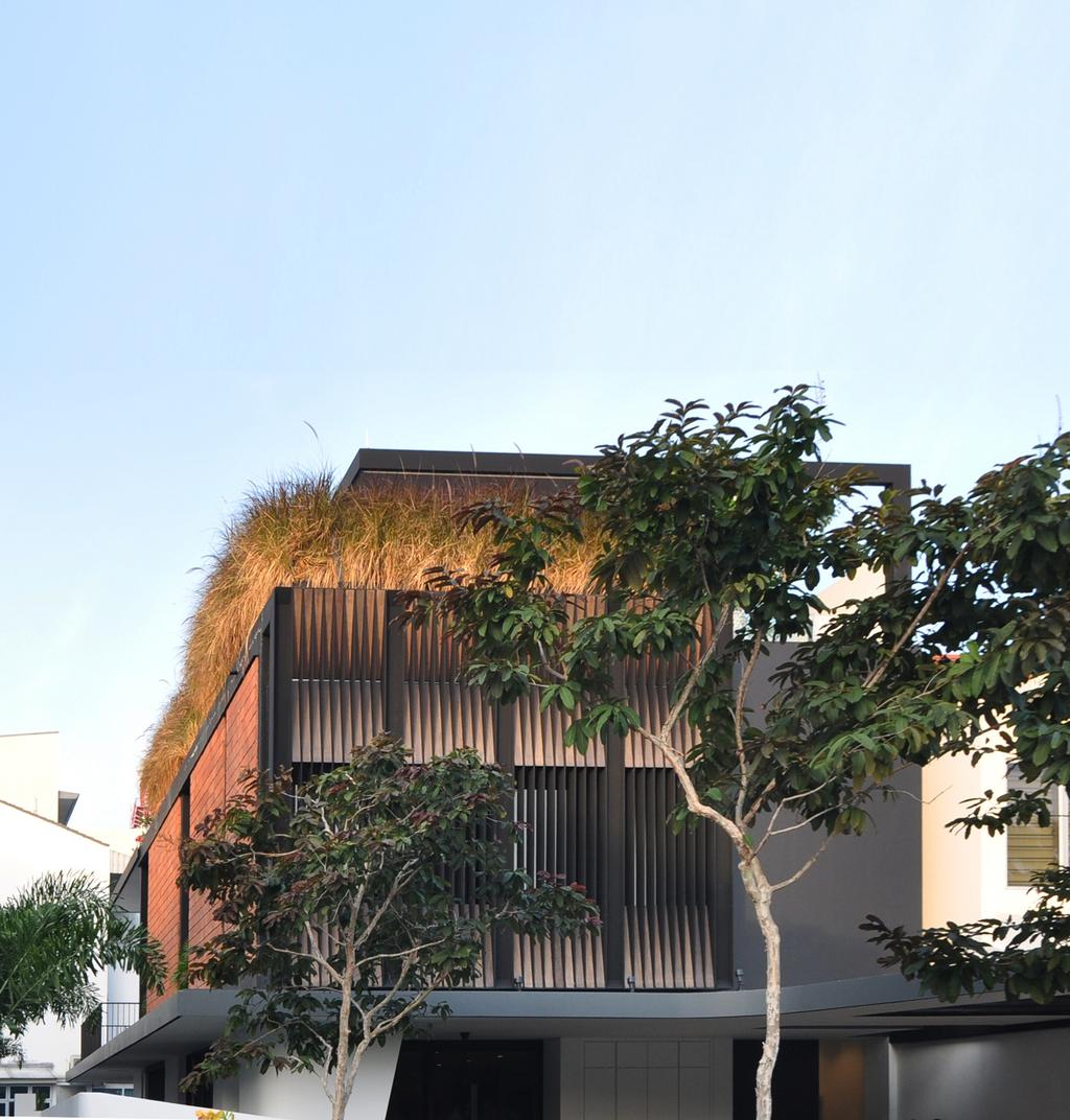 Modern, Landed, Palm Drive, Architect, Kite Studio Architecture, Building, Plants, Roof Top, Flora, Jar, Plant, Potted Plant, Pottery, Vase, Vine
