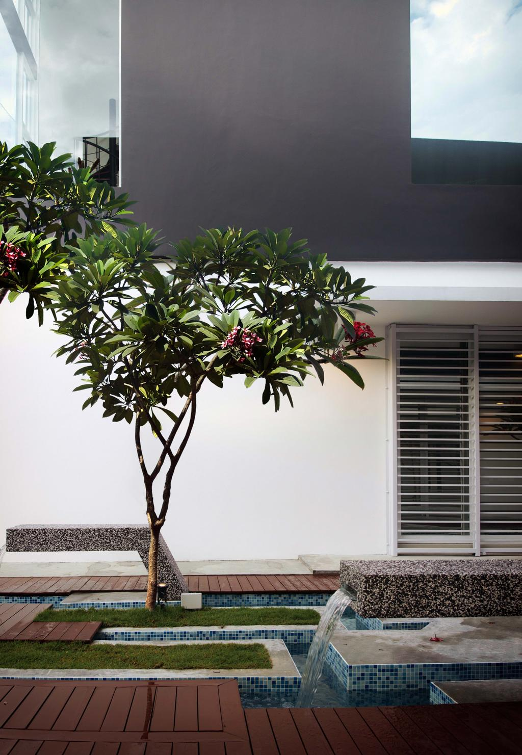 Modern, Landed, Haven @ Kulai, Architect, Code Red Studio, Plant, Plants, Trees, Greens, Nature, Swimming Pool, Flora, Jar, Potted Plant, Pottery, Vase