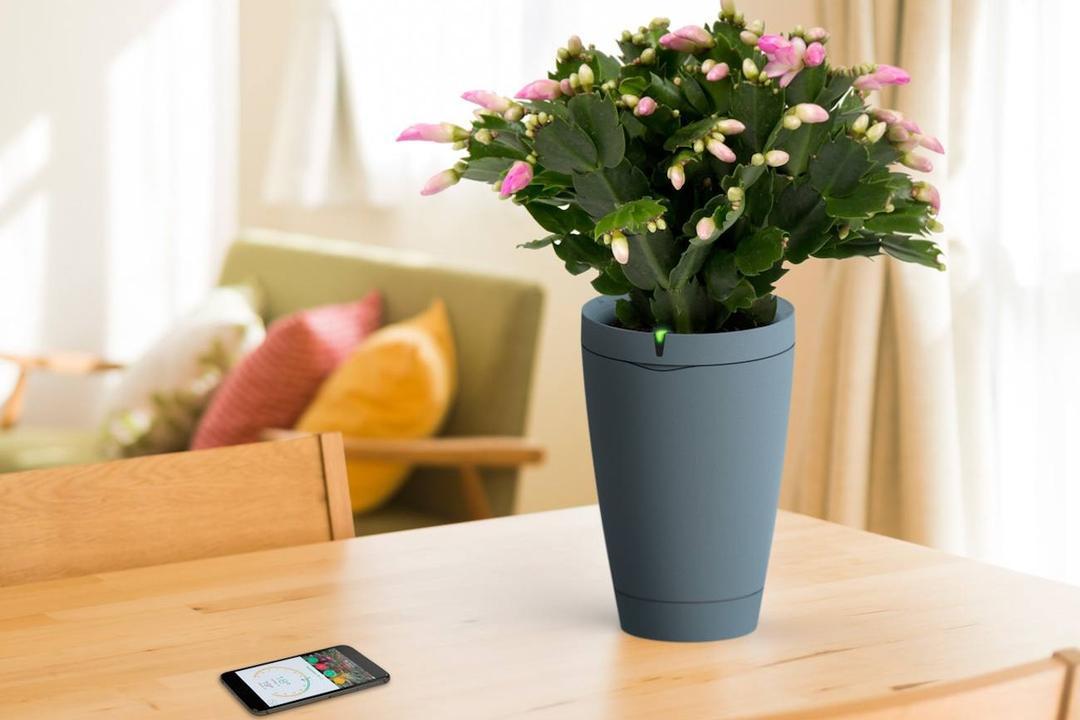 Smart planters for indoor gardening