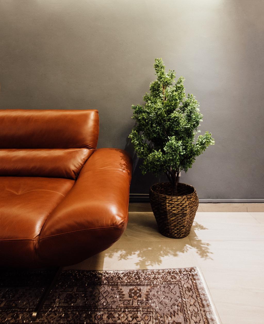 Contemporary, HDB, Tampines Street 72, Interior Designer, Fatema Design Studio, Bonsai, Flora, Jar, Plant, Potted Plant, Pottery, Tree, Vase, Couch, Furniture
