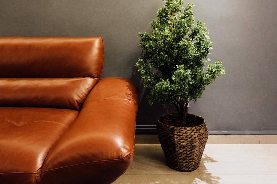 Tampines Street 72, Fatema Design Studio, Contemporary, HDB, Bonsai, Flora, Jar, Plant, Potted Plant, Pottery, Tree, Vase, Couch, Furniture