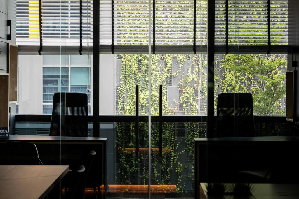 Schema Craft Interior Design Office, Commercial, Interior Designer, Schemacraft, Contemporary, Blinds, Glass, Rolller Chairs, Table, Flora, Jar, Plant, Potted Plant, Pottery, Vase