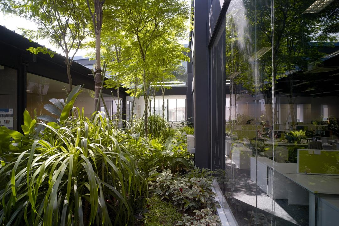 HG Metal HQ & Warehouse, The Design Abode, Minimalistic, Commercial, Palnts, Glass Windows, Flora, Jar, Plant, Potted Plant, Pottery, Vase, Garden, Gardening, Outdoors