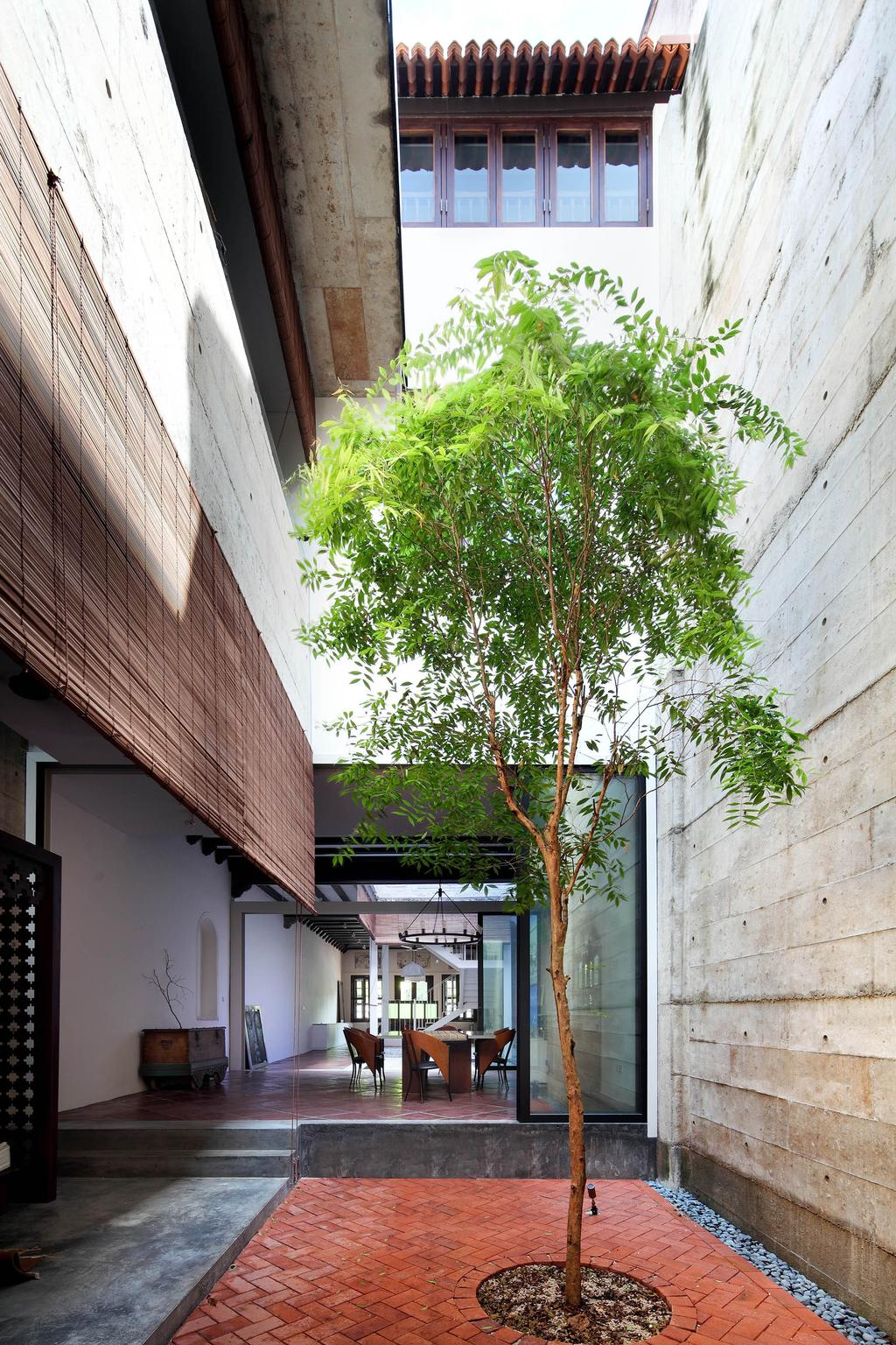 Traditional, Landed, Garden, Neil Road Shophouse, Interior Designer, The Design Abode, Plants, Trees, Bright, Natural Lighting, Building, Cottage, House, Housing, Wall