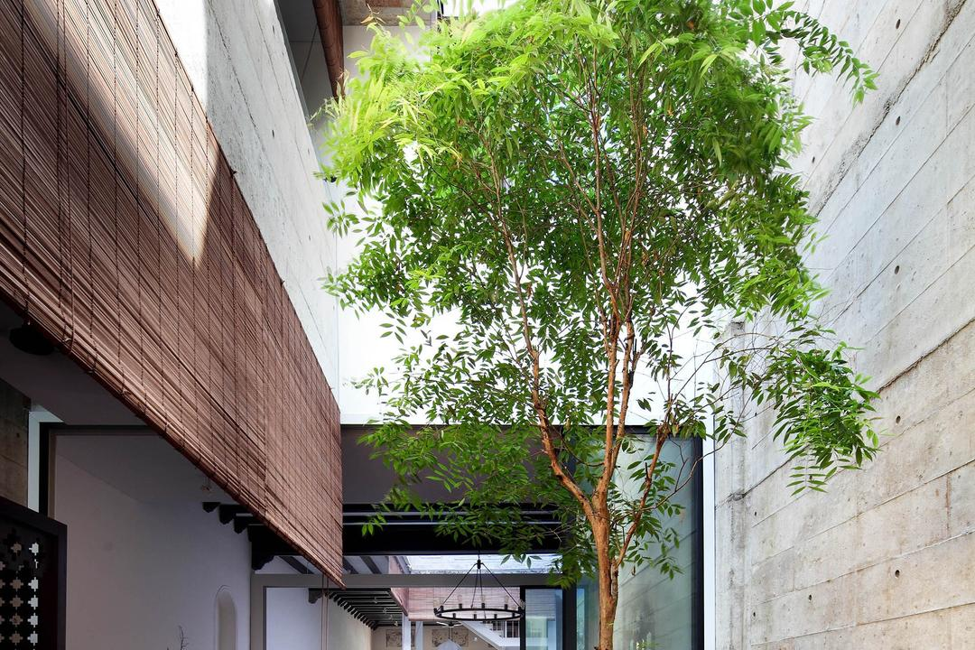 Neil Road Shophouse, The Design Abode, Traditional, Garden, Landed, Plants, Trees, Bright, Natural Lighting, Building, Cottage, House, Housing, Wall