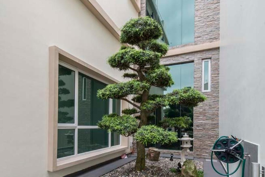 Yunnan Crescent (Block 124), Posh Living Interior Design, Transitional, Garden, Landed, Plants, Grass, Trees, Bonsai, Flora, Jar, Plant, Potted Plant, Pottery, Tree, Vase, Conifer, Yew, Dill, Food, Seasoning, Gutter