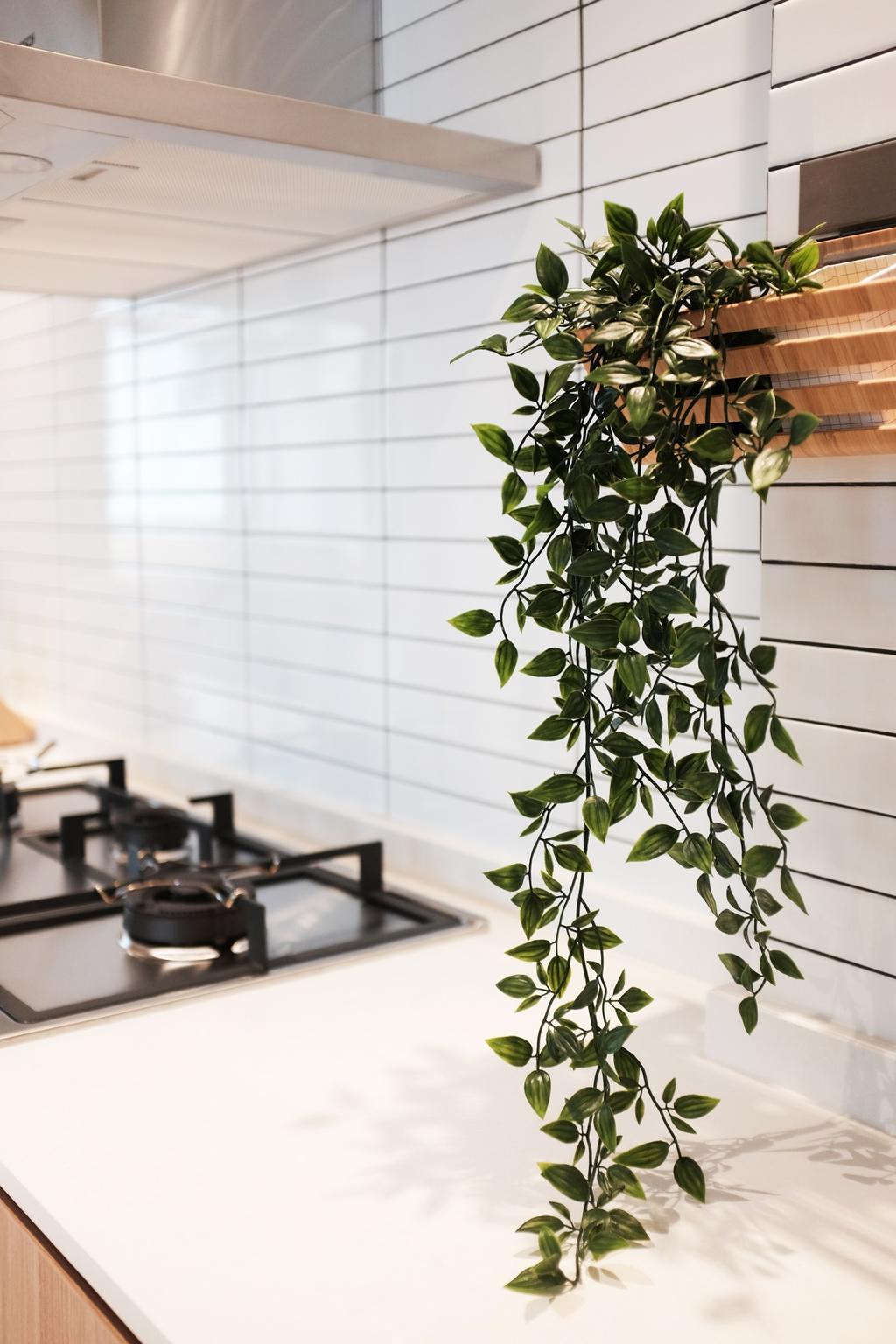 Scandinavian, HDB, Kitchen, Yishun Ring Road, Interior Designer, KDOT, Flora, Jar, Plant, Potted Plant, Pottery, Vase, Leaf