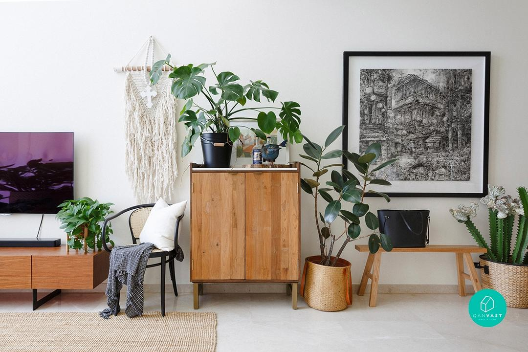 Caring for Indoor Plants guide