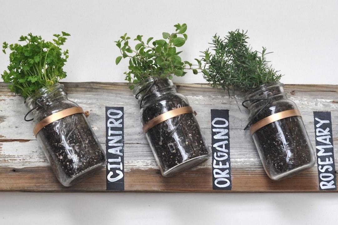 10 Tips To Start Your First Herb Garden In Singapore 8