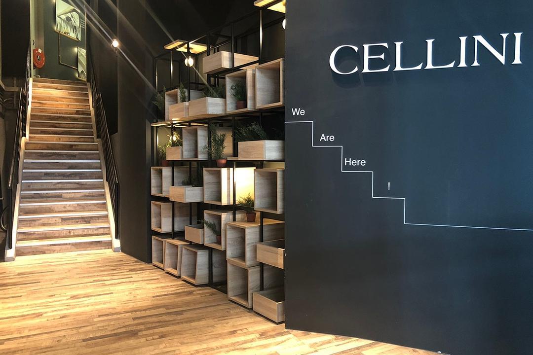 Cellini 3