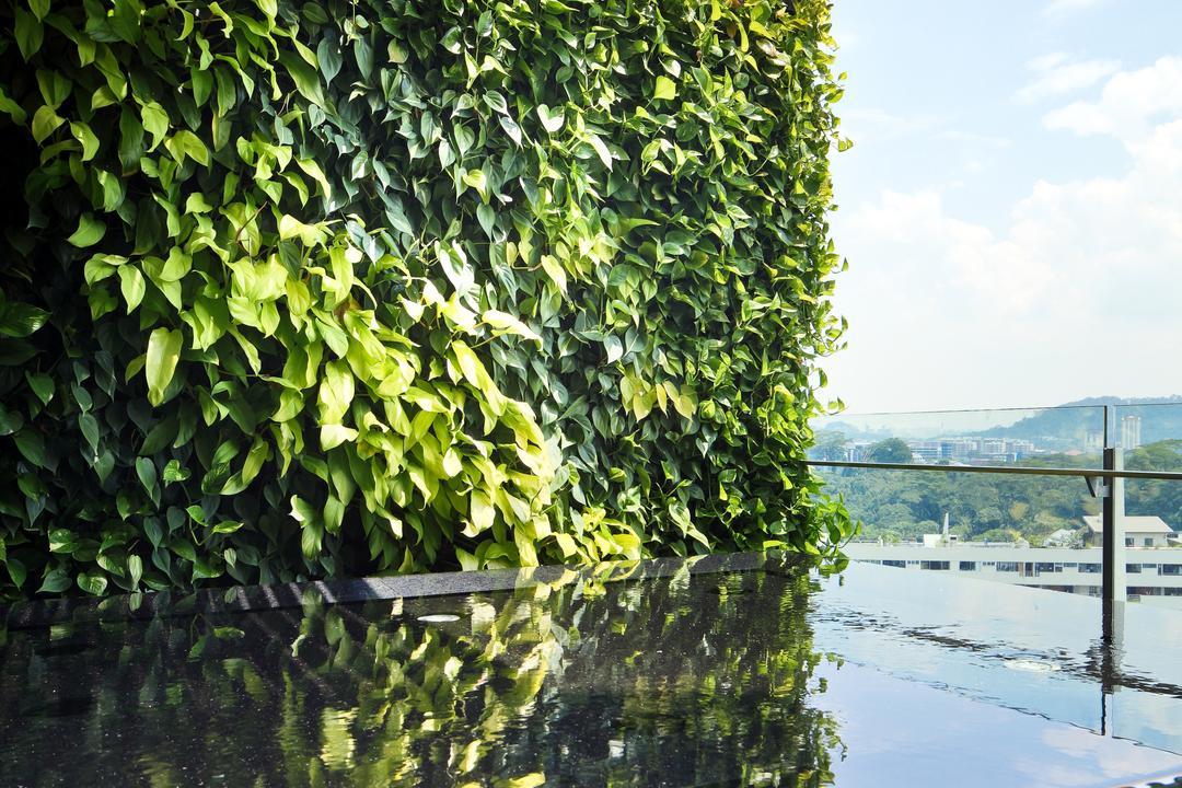 The Serenade, Haireliving, Contemporary, Modern, Garden, Condo, Rooftop Garden, Vertical Garden, Landscaping