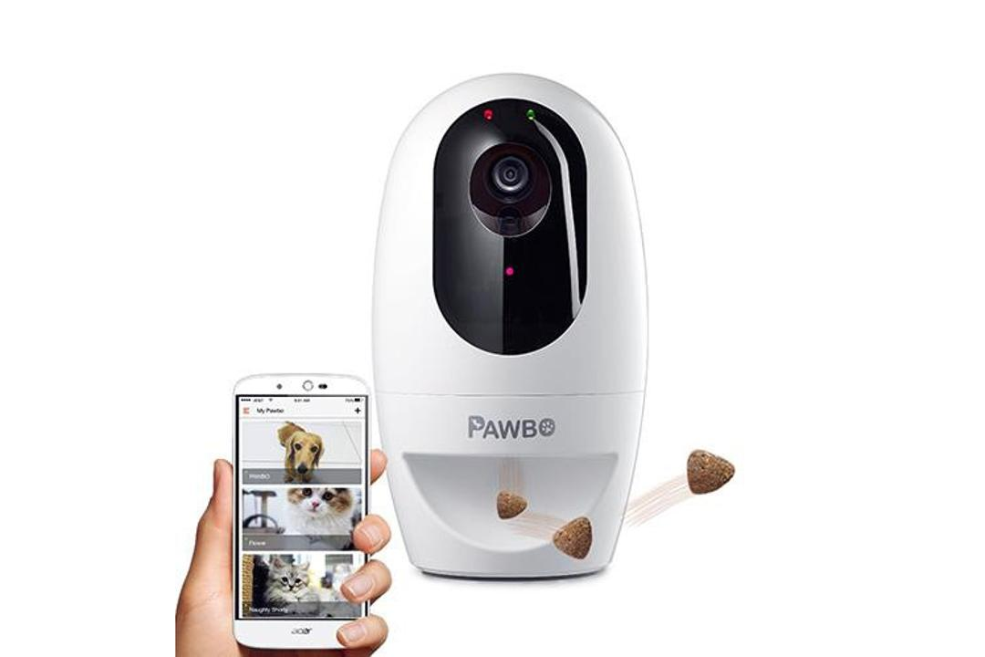 pet cameras for the home