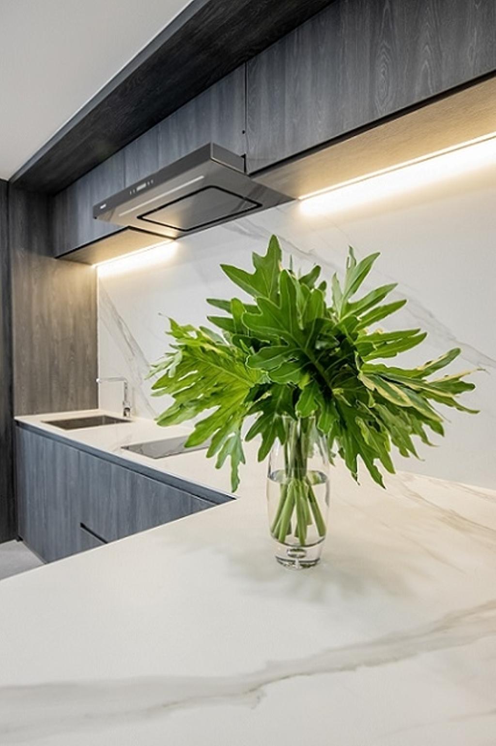 Contemporary, Landed, Kitchen, Cashew Crescent, Interior Designer, Baum Project Pte Ltd, Minimalistic