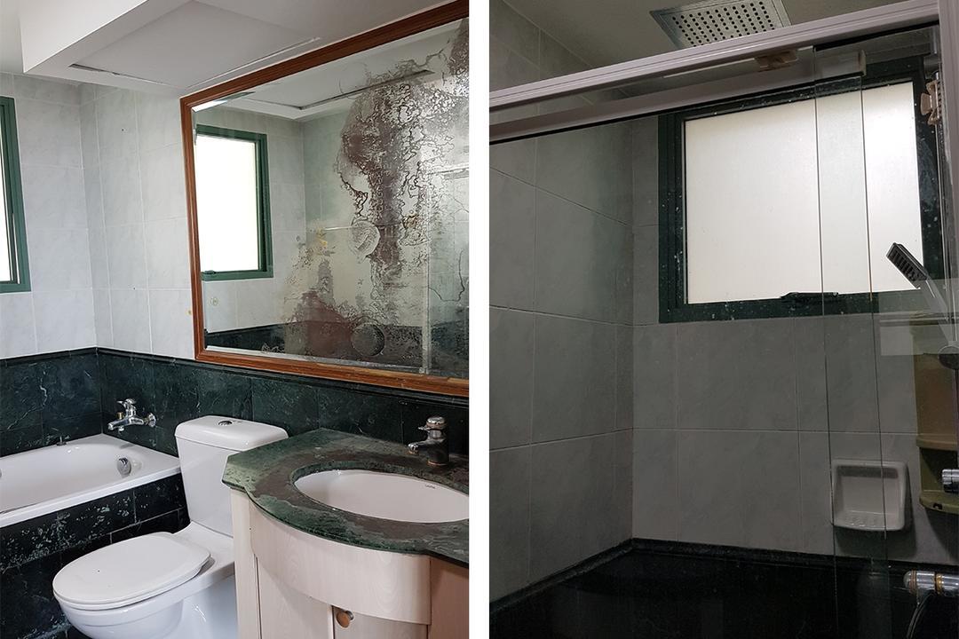 Schemacraft Palm Garden condominium renovation