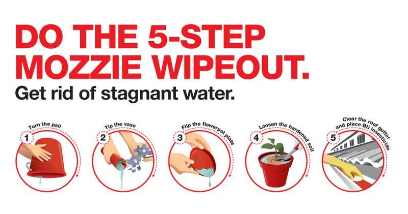 dengue cases singapore mozzie wipeout