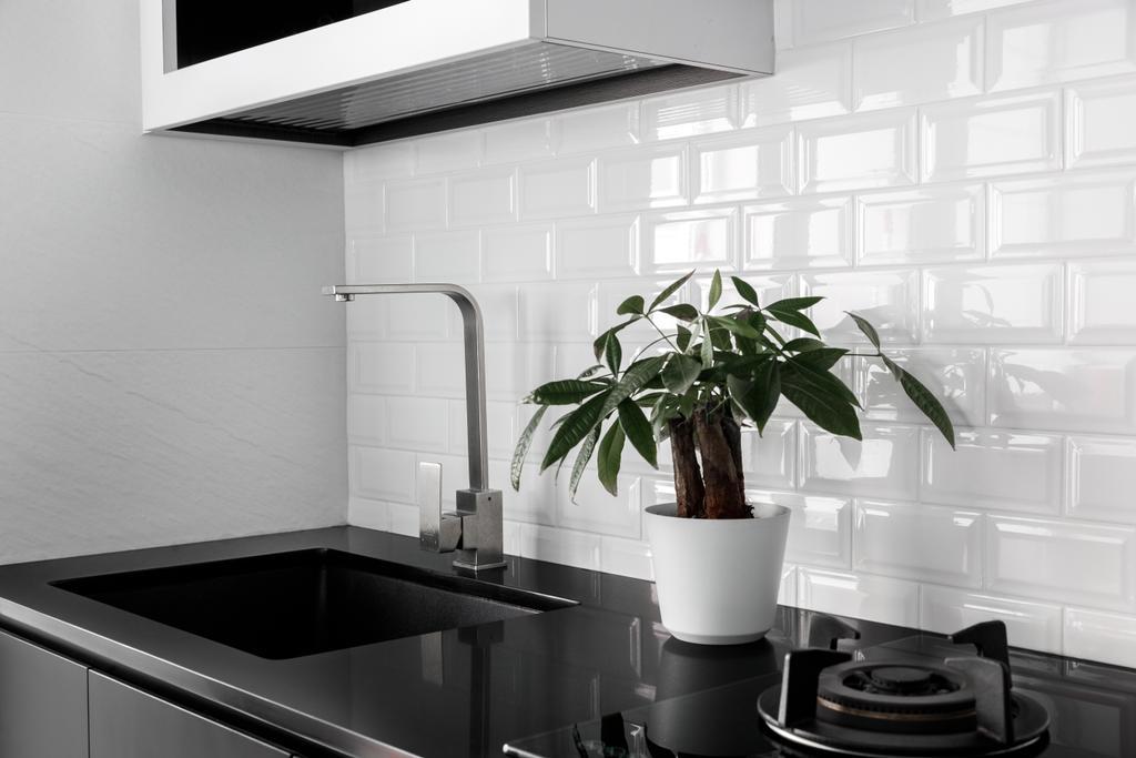 Contemporary, HDB, Kitchen, Ang Mo Kio Street 51, Interior Designer, Jialux Interior