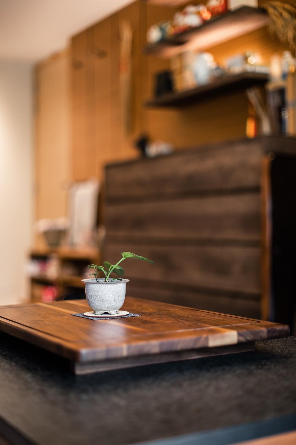 Contemporary, Condo, Dining Room, The Rainforest, Interior Designer, Archiwu Interior