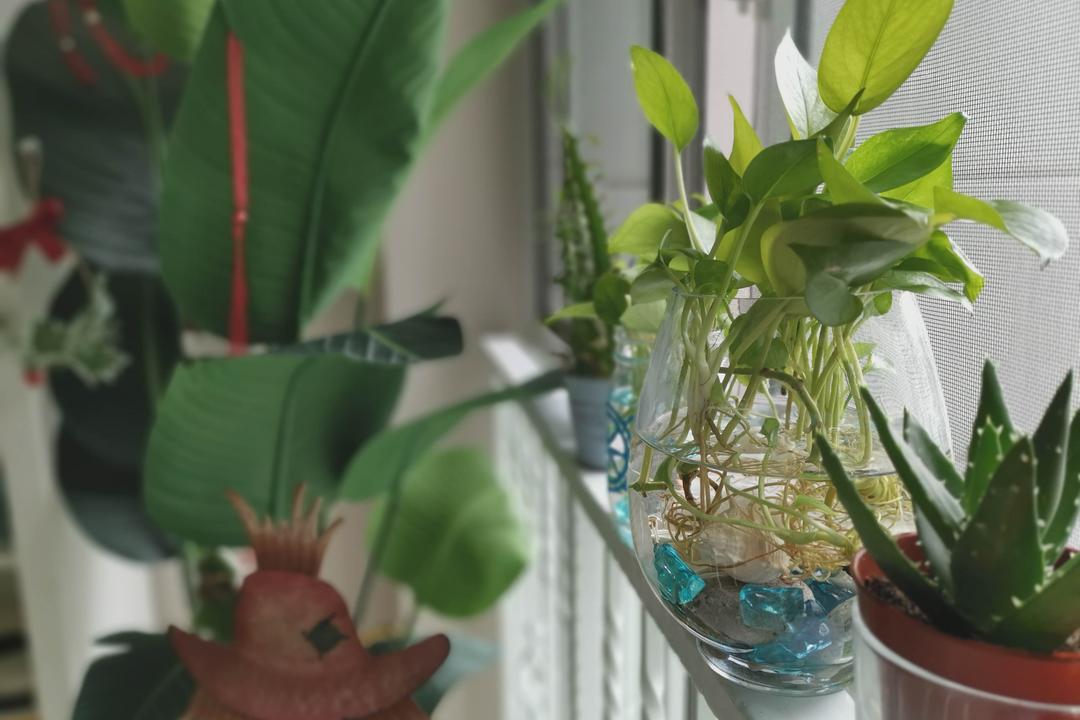 Bukit Batok West, Urban Home Design 二本設計家, Modern, Scandinavian, Garden, HDB