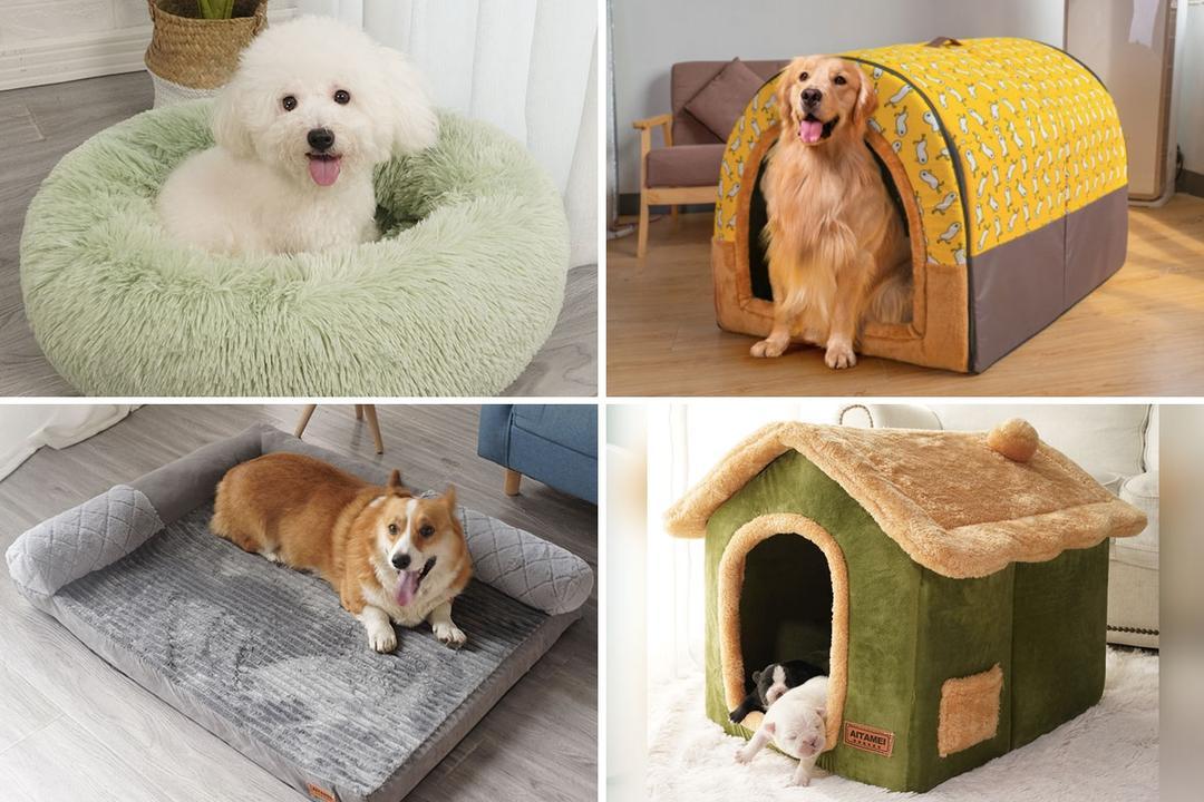 taobao dog beds