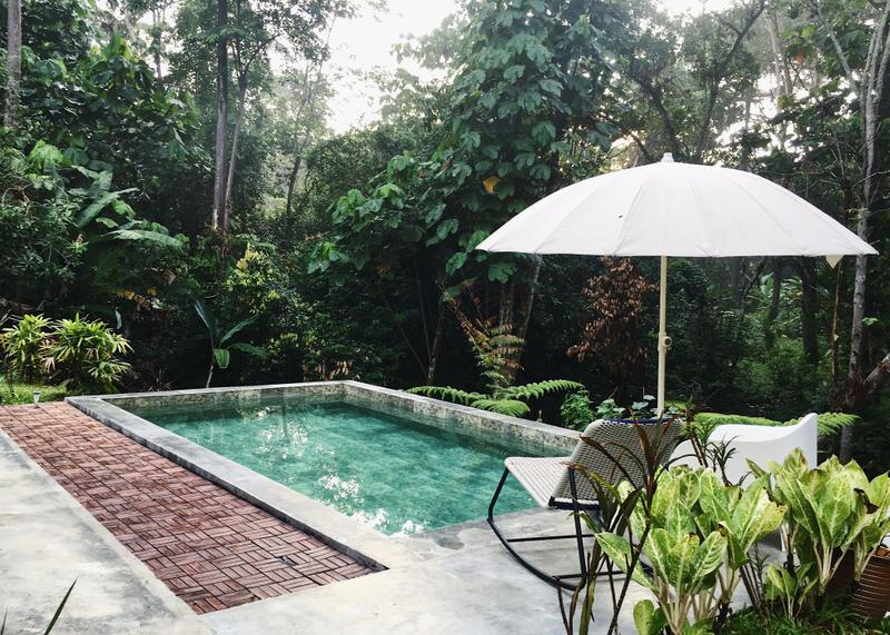bungalow surrounded by jungle