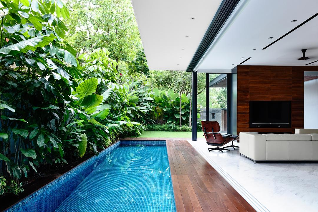 Greenwood Avenue, HYLA Architects, Modern, Living Room, Landed, Building, House, Housing, Villa, Flora, Jar, Plant, Potted Plant, Pottery, Vase, Electronics, Entertainment Center, Pool, Water, Lcd Screen, Monitor, Screen, Forest, Jungle, Land, Nature, Outdoors, Tree, Vegetation, Flooring