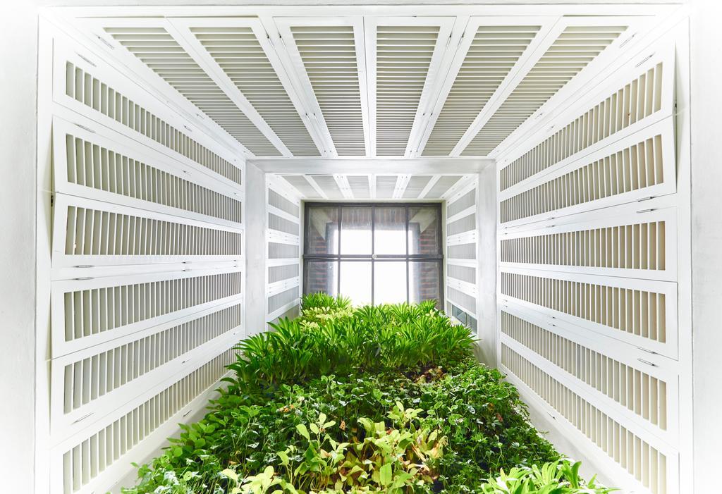 Neil Road, Commercial, Interior Designer, R+R Design Studio, Industrial, Green House, Garden, Plants, Window, Architecture, Building, Skylight