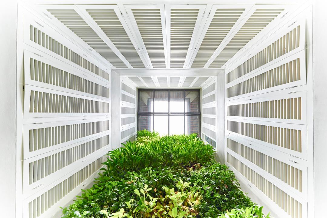 Neil Road, R+R Design Studio, Industrial, Commercial, Green House, Garden, Plants, Window, Architecture, Building, Skylight